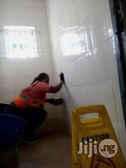 Washing Of Toilets And Bathrooms | Cleaning Services for sale in Lagos State, Lekki Phase 2