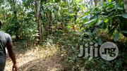 Farm Land In Ogun State | Land & Plots For Sale for sale in Ogun State, Odeda