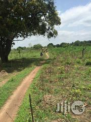 1000 Acres Of Land At Awaye Abeokuta Way Iseyin | Land & Plots For Sale for sale in Oyo State
