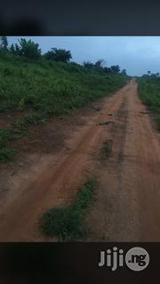 Very Fertile 6000 Acres Of Land For Lease With All Documents | Land & Plots for Rent for sale in Oyo State
