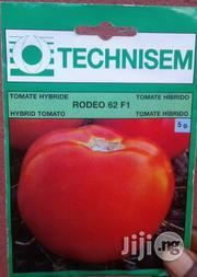 F1 Rodeo 62 Hybrid Tomato (Beef Tomato) Seed For Sale | Feeds, Supplements & Seeds for sale in Delta State, Uvwie