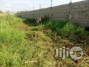 A Plot Of Land In Gbagada, Ifako Express By Good Land Church For Sale | Land & Plots For Sale for sale in Lagos State, Gbagada