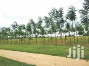 27,000 Acres Of Land With C.Of.O At Iseyin Oyo State | Land & Plots For Sale for sale in Oyo State