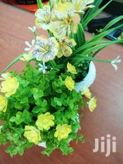 Beautiful Flowers On Cups For Sale | Garden for sale in Cross River State, Ogoja