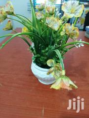 Beautiful Flowers On Cups For Sale | Garden for sale in Cross River State, Obudu