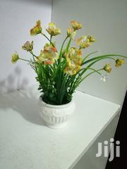 Mini Flowers For Decoration And Beautification Of Homes For Sale | Garden for sale in Abia State, Obi Ngwa