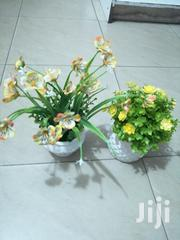 Green Artificial Cup Flowers For Classic Decorations   Garden for sale in Ebonyi State, Ohaukwu