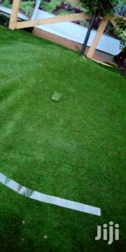 Carpet Grass | Landscaping & Gardening Services for sale in Lagos State, Ikeja
