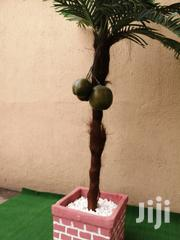 Quality Indoor And Outdoor Synthetic Coconut Tree   Garden for sale in Adamawa State, Mayo-Belwa