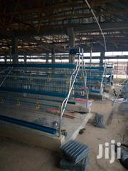Mordern Layers Battery Cage | Farm Machinery & Equipment for sale in Abuja (FCT) State, Asokoro
