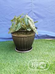 Suppliers Of Metal Flower Pot | Garden for sale in Yobe State, Fika