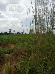 500 Plots Of Farm Land In Orumba South For Sale | Land & Plots For Sale for sale in Anambra State, Orumba