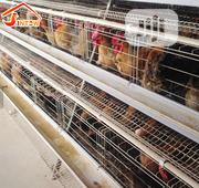 China Factory Battery Cage Best Quality Poultry Cages | Farm Machinery & Equipment for sale in Kogi State, Adavi