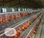 China Factory Best Battery Cage Hot Galvanized Poultry Cages | Farm Machinery & Equipment for sale in Lagos State, Apapa