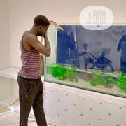 Aquarium Construction And Maintenance | Pet Services for sale in Abuja (FCT) State, Maitama