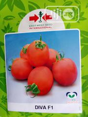 Diva Tomato Seed - 5g | Feeds, Supplements & Seeds for sale in Delta State, Uvwie
