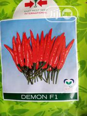 5g Demon F1 Chilli Pepper Seed | Feeds, Supplements & Seeds for sale in Delta State, Uvwie