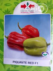 Piquante Red F1 Hot Pepper - 500 Seed Pack | Feeds, Supplements & Seeds for sale in Delta State, Uvwie
