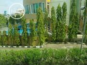 Hotel For Sale   Houses & Apartments For Sale for sale in Lagos State, Ikeja
