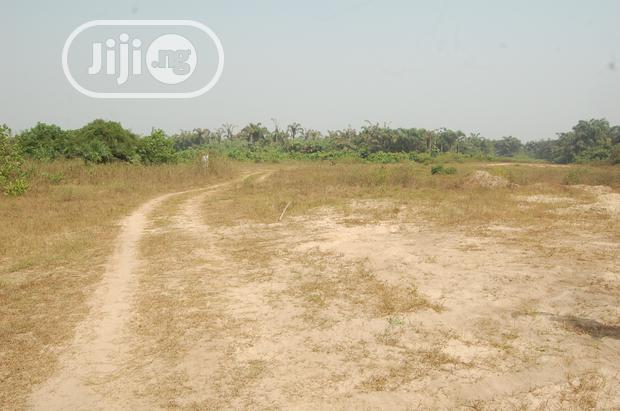 Very Much Affordable Dry Land On Massive Sale