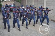 Executive & VIP Protection Service Provider In Nigeria | Other Services for sale in Lagos State, Ajah