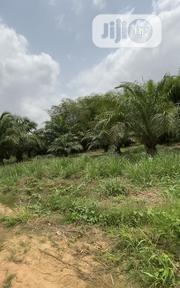 Cheap Agricultural Farm Lands In Ogun State | Land & Plots For Sale for sale in Ogun State, Odeda
