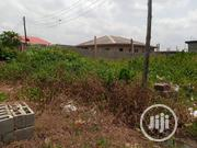 Half Plot of Land for Sale in Igando at College Bus Stop Axis | Land & Plots For Sale for sale in Lagos State, Ikotun/Igando