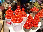 Fresh Tomatoes | Meals & Drinks for sale in Lagos State, Magodo