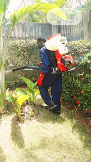 City Fumigation/Disinfecting Services | Feeds, Supplements & Seeds for sale in Lagos State, Ikeja