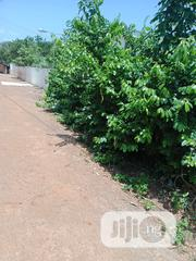 2 Plots of Land for Sale Melekh Olam Consultium | Land & Plots For Sale for sale in Anambra State, Awka