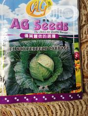 F1 800 Perfect Cabbage 20gm | Meals & Drinks for sale in Ogun State, Ado-Odo/Ota