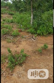A Plot of Land at Agbede Village Tanke | Land & Plots For Sale for sale in Kwara State, Ilorin East