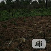 Acers And Plots Of Land Available At Erunmu, Olodo. Deed Of Conveyance | Land & Plots For Sale for sale in Oyo State, Egbeda