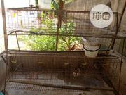 Poultry Cage | Farm Machinery & Equipment for sale in Lagos State, Ikorodu