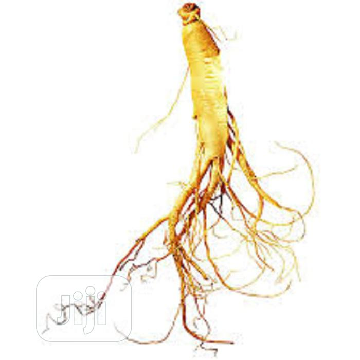 Ginseng Extract (Per Kg)