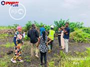 Genuine Plots Of Land In Ikorodu | Land & Plots For Sale for sale in Lagos State, Ikorodu