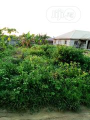This Lands Is Gazetted at Ibeju Lekki | Land & Plots For Sale for sale in Lagos State, Ibeju