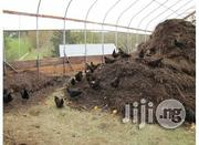 Organic Manure Fertilizer Chicken Droppings Poultry Dung | Feeds, Supplements & Seeds for sale in Plateau State, Jos