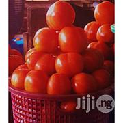 Tomato Preservation for More Than 12months | Meals & Drinks for sale in Lagos State, Ikeja